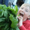 Whatcom Farm-to-School