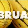 February – Winter Squash
