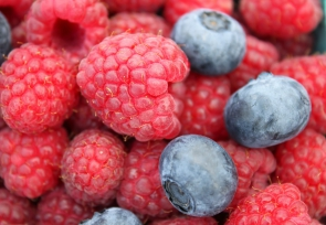 Haugen's Raspberries Inc.