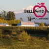 Bellewood Acres