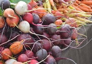 November – Root Vegetables