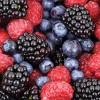 February – Frozen Berries
