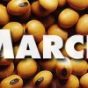 March – Grains
