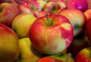 January – Apples