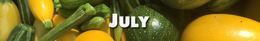 July – Summer Squash