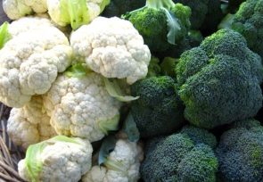 October – Broccoli & Cauliflower