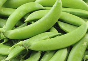 June – Snap Peas