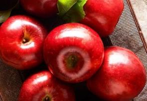 Celebrating Washington's First Apple – The Cosmic Crisp