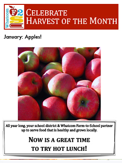 flyer-january-apples