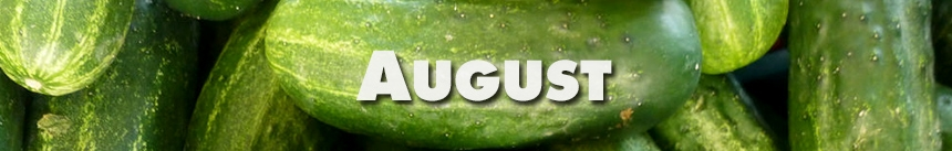 August – Cucumbers
