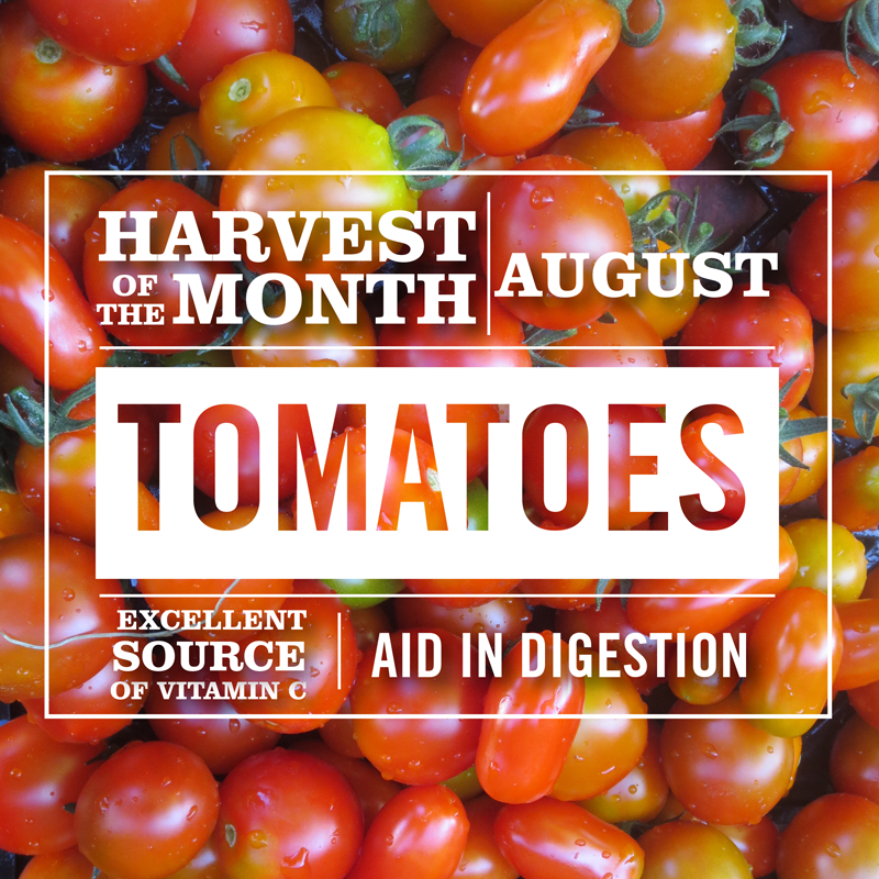 Harvest of the Month - Tomatoes