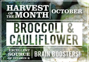 cauliflower-and-broccoli October