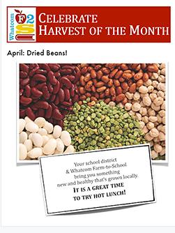 flyer-april-beans