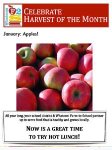 flyer-january-apples