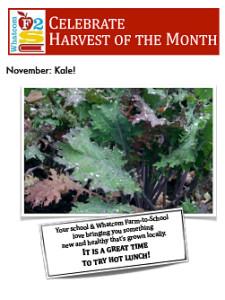 flyer-november-kale