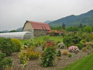 Cloud Mountain Farm Center 3