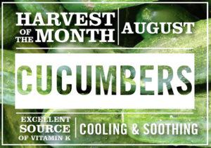 August-HOM-cucumbers