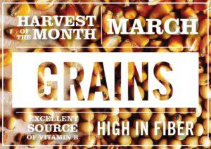 March-grains-2018