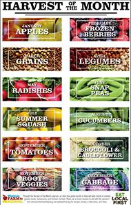 Farm-toSchool-harvest-yearly-calendar-2019-2020